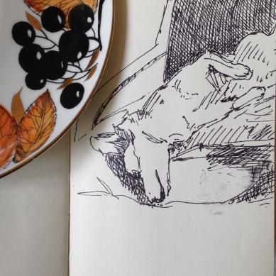 sleeping Ollie sketch