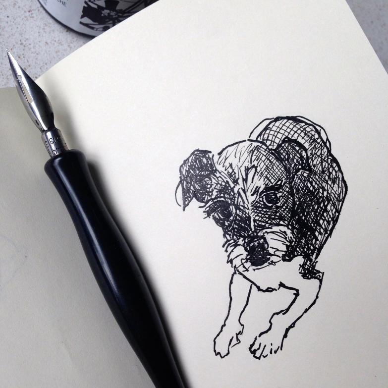 Bella in ink