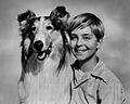 120px-Lassie_Tommy_Rettig_Circa_1955