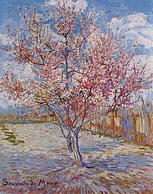 300px-Vincent_Willem_van_Gogh_113