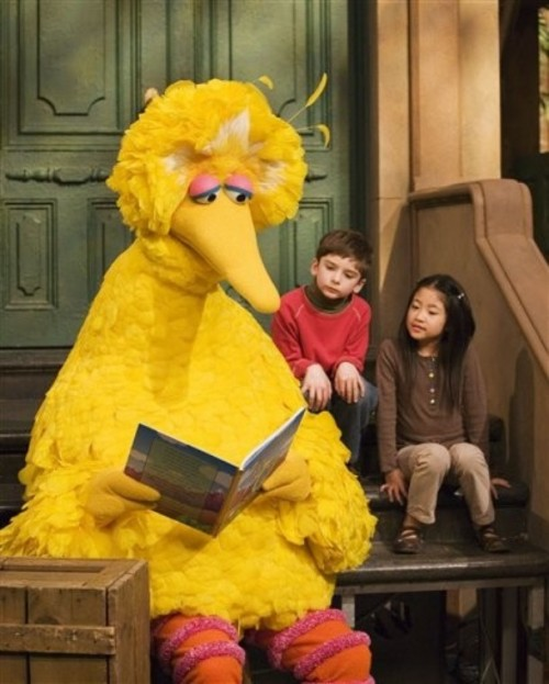 big_bird_book_kids
